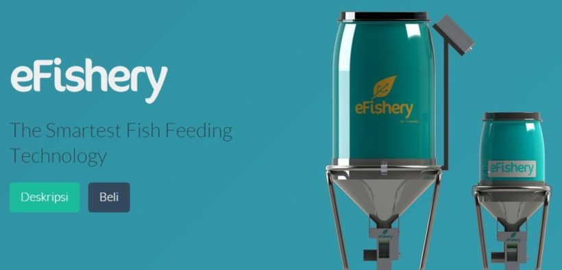 A Fishery Startup, eFishery Receives Series B Funding