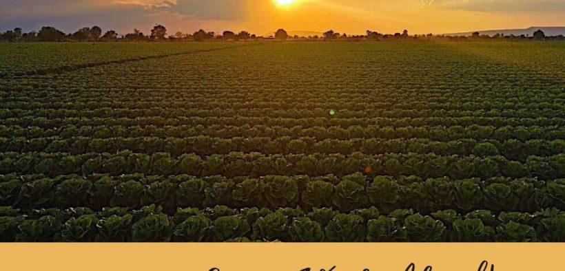Global Supplier of Organic Farm - Avalon Fresh chooses Malaysia