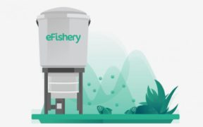 Investree and Startup eFishery Distribute IDR 30 Billion for Fish Farmers