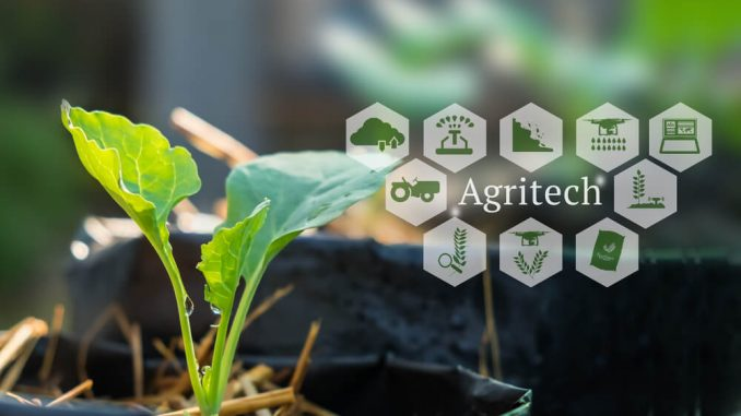 Agriculture and Fisheries (Agritech) Compete to Grab Investors' Attention