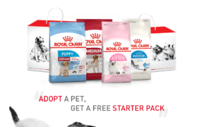 Royal Canin Malaysia and PetFinder.my launches campaign to encourage pet adoption.