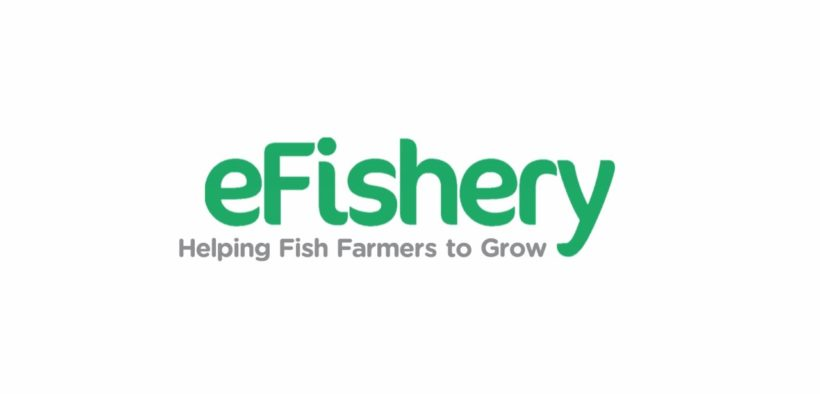 eFishery Hires Former CEO of GoPay, Targeting 900% Growth