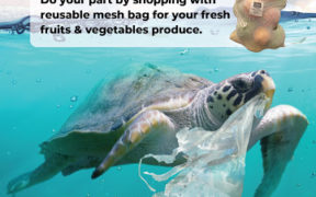 Village Grocer and B.I.G target to eliminate 30 million single-use plastic in 2021