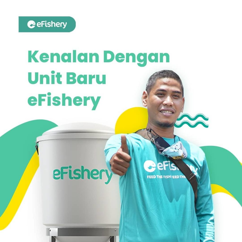 eFishery Startup Encourages Women to Become Aquaculture Entrepreneurs