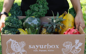 YDBA with Sayurbox Invites Young People to Farm