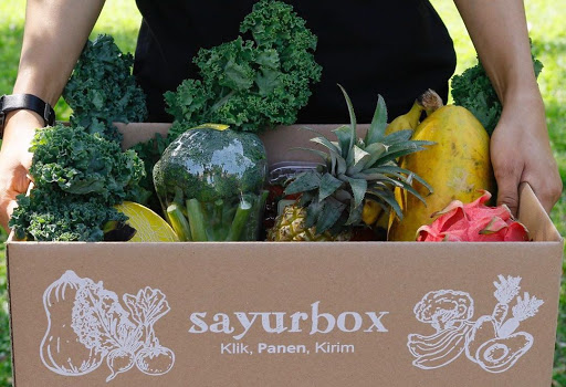 Sayurbox Redesigns the Packaging to Prevent Plastic Waste